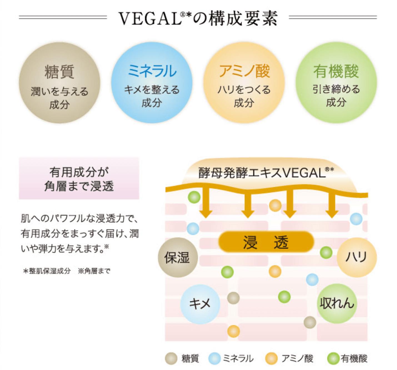 アルケミーの主要成分VEGALの説明